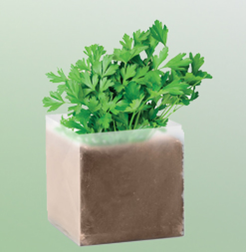 Parsley Compost Bag